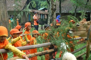 081231938011 , Paket Outbound di Jawa Timur , Outbound Jombang, TK An-Nur Ngelom Sidoarjo 4