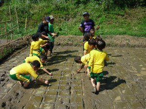 Aktivitas Outbound Edukasi Alam