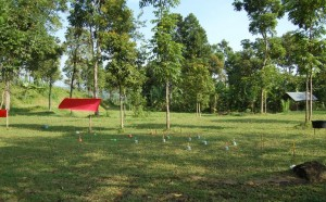 Lapangan Outdoor di Kaliandra , Lapangan Outbound