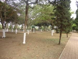 Lapangan Outbound Kebun Teh Wonosari Lawang