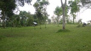 Lapangan Outdoor di Kaliandra Eco Resort